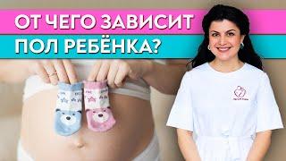 От чего зависит пол будущего ребенка? / Как начать планирование беременности?