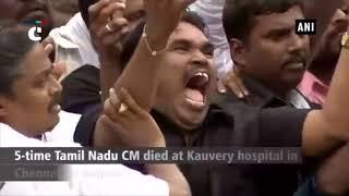 Karunanidhi death: MK Stalin breaks down after Madras HC allows Karunanidhi's burial at Marina beach
