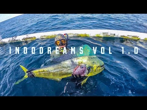 Indonesia Spearfishing Charter: Indodreams Vol 1.0