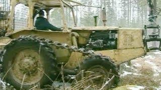 """""""Stor Nalle"""" in the forest!/ Följ med in i Stor Nallen!"""