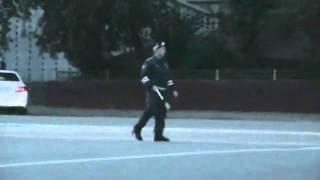 Танцующий регулировщик Россия