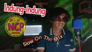 DJ Indung-Indung (Cover Renno Slow Mix)
