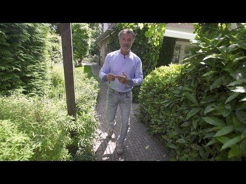 Tuinverlichting aanleggen tips voor je bestaande of for Tuin aanleggen tips