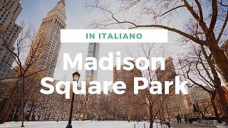New York Eyes - Madison Square Park [ITA]