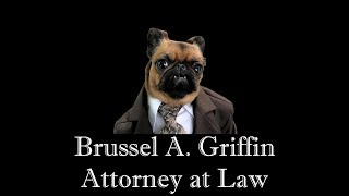 Brus Griffin Attorney at Law
