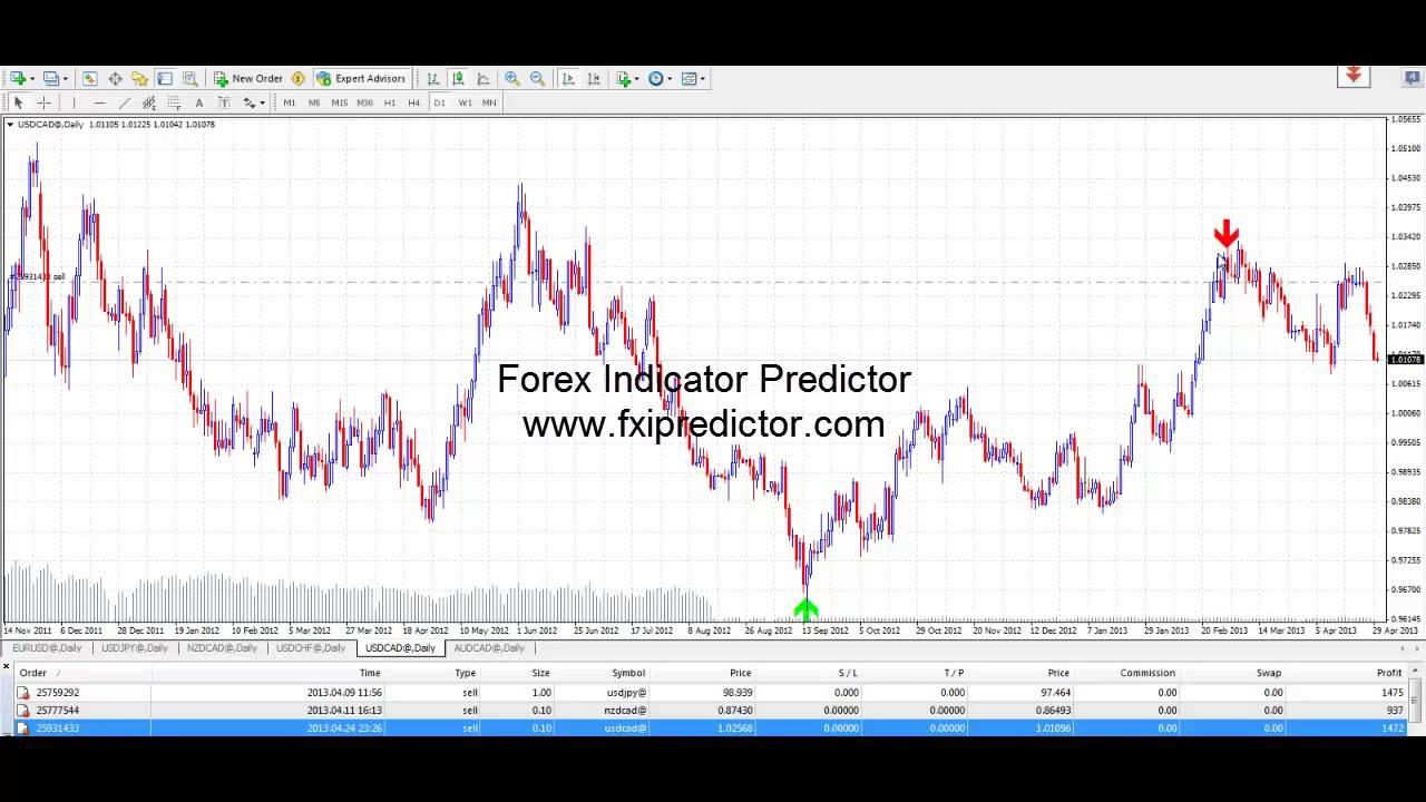 Forex indicator live