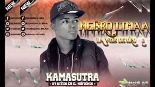 Negro Lima   KamaSutra By Nitido En El  Nintendo
