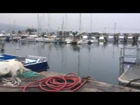 No Safe Harbors In Hawaii