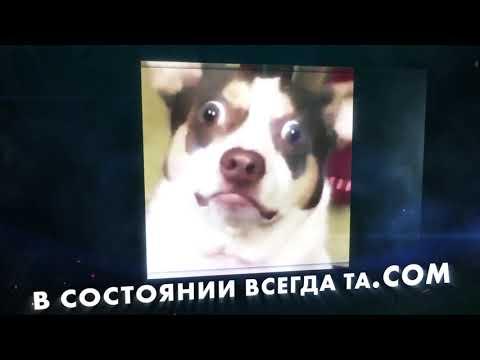 Для кого подойдет домен .COM | HOSTiQ.ua