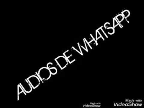 Los Audios De WhatsApp Mas Graciosos Del 2017