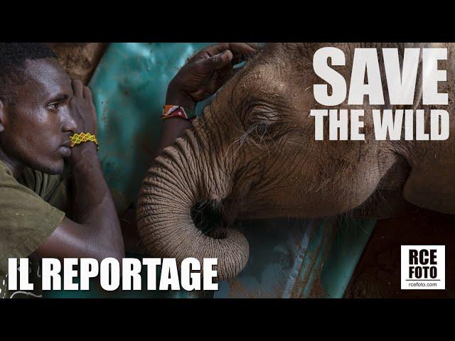 SAVE THE WILD - IL REPORTAGE