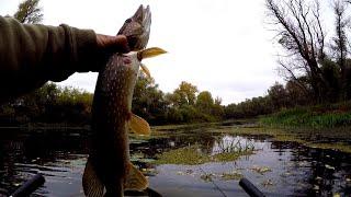 ЩУКИ на АТОМ и ВЕРТУШКИ Рыбалка осенью на озере