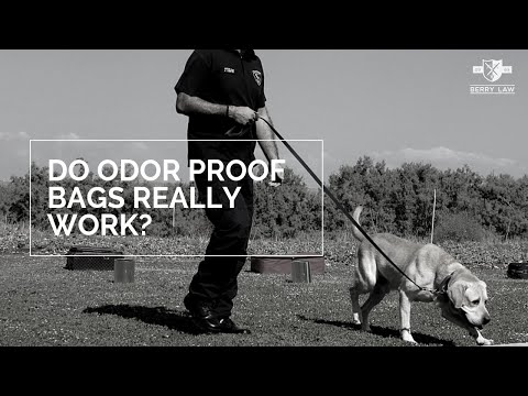 Do Odor Proof Bags Really Work? | Nebraska Drug Lawyers