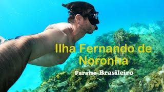 How does look like Brazilian Paradise?/Ilha Fernando de Noronha Paraíso Brasileiro