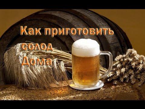 Солод в домашних условиях для пива