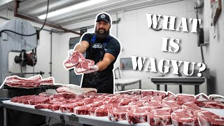 Wagyu Beef and Kobe Beef [What's the Difference?] The Bearded Butchers Answer and Grill!