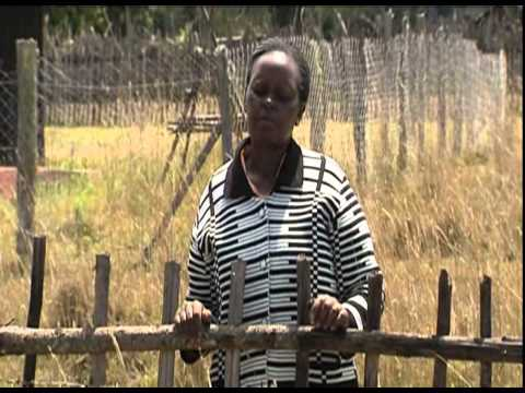 Kenya commemorates Westgate Mall attack