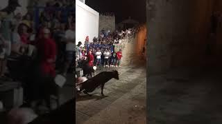 MARSHMELLO I LA VAQUILLA DE PEÑISCOLA