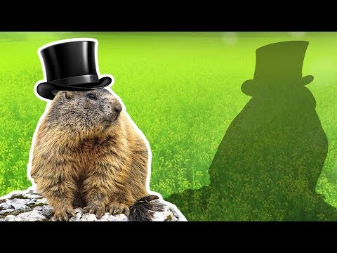Groundhogs For Kids | Groundhog Day | Wild Animals