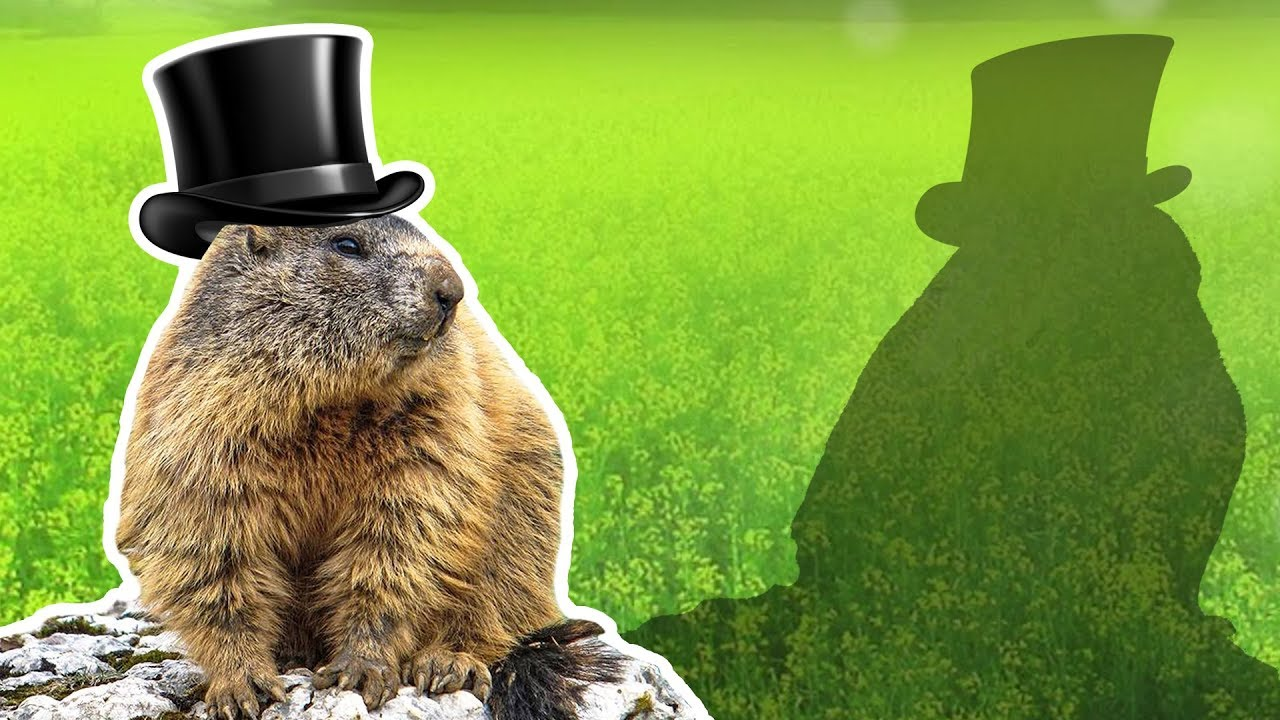 Groundhogs for Kids   Groundhog Day   Wild Animals - YouTube [ 720 x 1280 Pixel ]