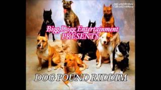 Download Maffcat - Ziva Zvaunoda (Dog Pound Riddim) Jan 2017 MP3 song and Music Video