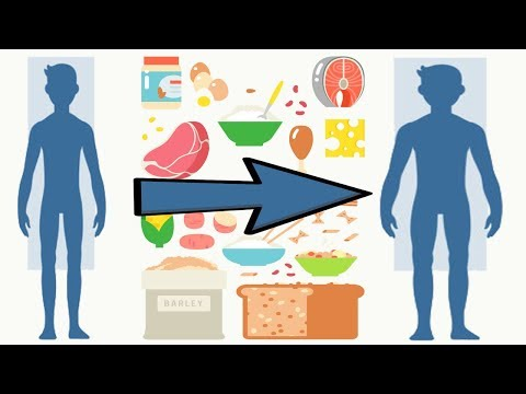 Сколько и чего нужно есть для набора массы