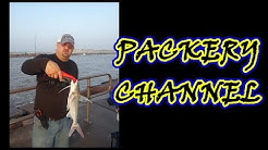 Fishing the Packery Channel Jetty   Corpus Christi   #fishing
