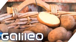 Die wichtigsten Nahrungsmittel der Welt | Galileo Lunch Break