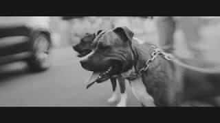 Infinit feat. Haze - Anderes Kaliber (prod. Melbeatz & Jumpa)
