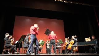 A. Vivaldi - Concerto in G major RV 436 - Giulio Boccaletti (ocarina)