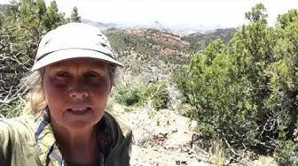 Hiking Mount Peeley , Arizona Trail , Tonto National Forest