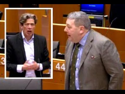 It's not EU 'neo-colonialism' but 'global economic order', Socialist MEP tells UKIP's David Coburn