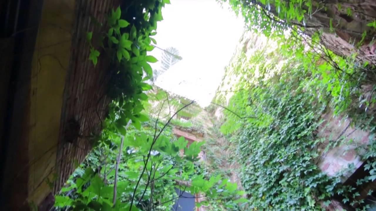 El jard n vertical casa rural vilafam s castell n for El jardin vertical de vilafames