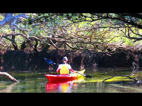 Kayak Garden Island Sept 2019