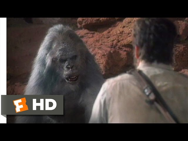 Congo (8/9) Movie CLIP - Killa Gorilla (1995) HD Travel Video