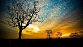 Θανατηφόρος  πυρετός - Μελίνα Τανάγρη