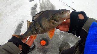 Рыбалка в Карелии Онежское озеро