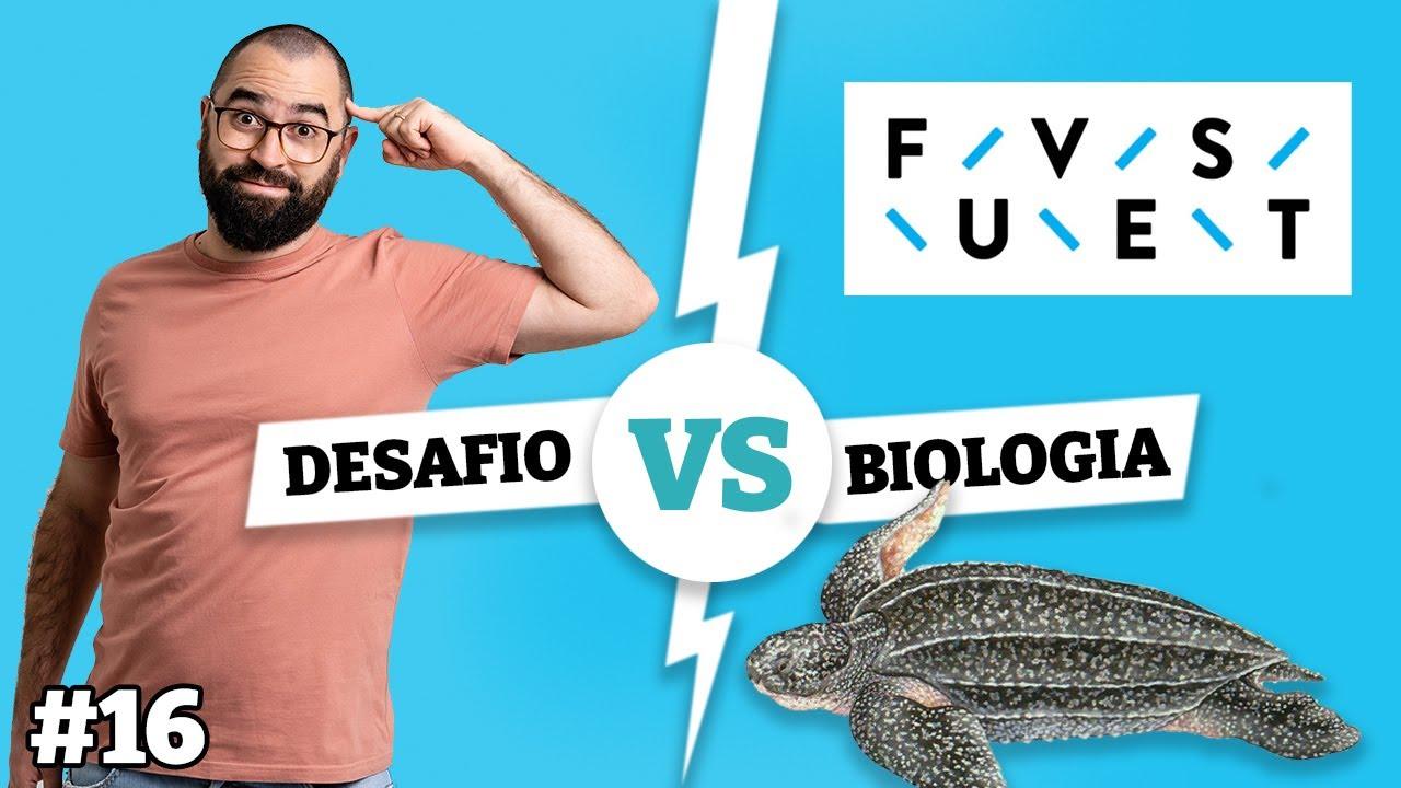As tartarugas escolhem o sexo dos bebês? FUVEST | Desafio Biologia - Prof. Guilherme