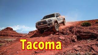 2019 toyota tacoma trd sport 4x4   2019 toyota tacoma trd off road review   2019 toyota tacoma sr5