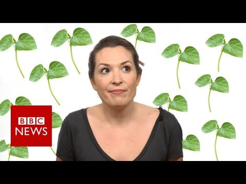 Is being vegan REALLY better for the environment?  - BBC News