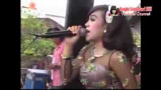 Gambar cover Dangdut Hot Koplo SERA - BANG JONO - LOVINA Live Terbaru