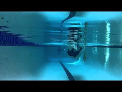 Robin underwater swim analysis
