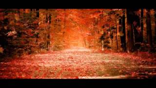 Shafiq Mureed New Farsi Sad, Romantic And A Very Heart Touching Song 2013 Must Listen