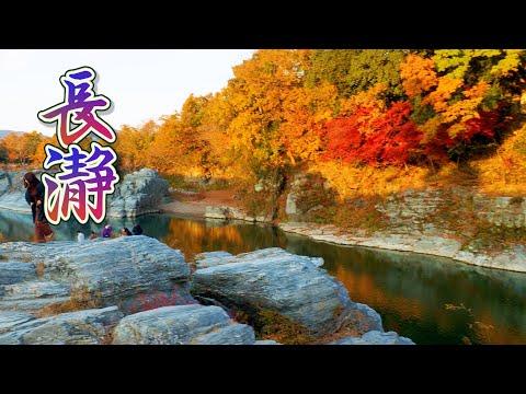 SAITAMA. The variety of fall colors at Nagatoro. #長瀞 #4K