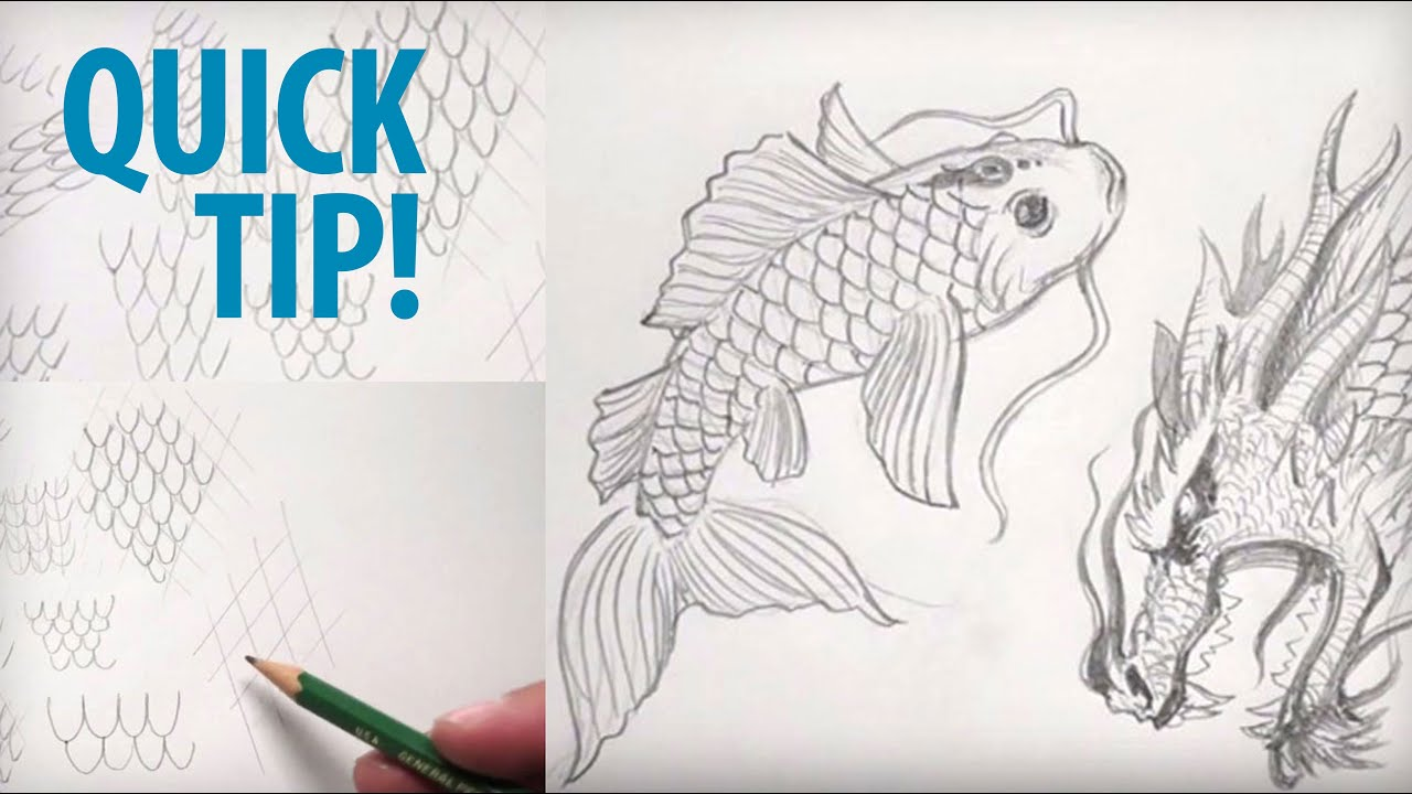 How to Draw Scales Freehand and with Guides Quick Tip