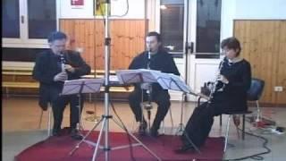 """W. A. Mozart - Aria from """"Papageno"""" - Die Zauberflöte"""