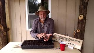 Planting Okra in the Greenhouse