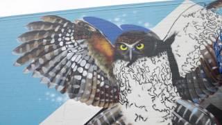 Paradox: Tauranga Street Art Festival / Charles and Janine Williams