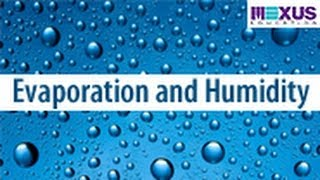 Hydrologic Cycle Explained | Learn Evaporation, Condensation and Humidity