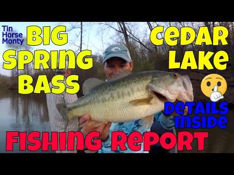 Big Fish Early Spring Fishing Report On Cedar Lake 3 29 2020